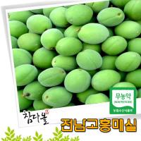 [5월28일부터 순차적 배송됩니다]고흥 무농약매실 특 10kg