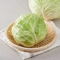 양배추/통(1.5kg미만)