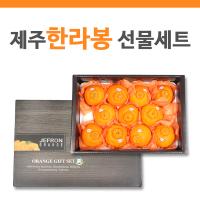 [수출하는제주과일]제프런 한라봉3kg(11-12과)