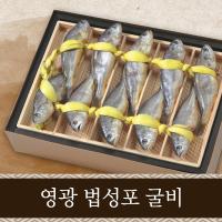 [송옥유통] 영광법성포 굴비 송옥세트 5호 (10미,1.0kg,19cm~21cm)